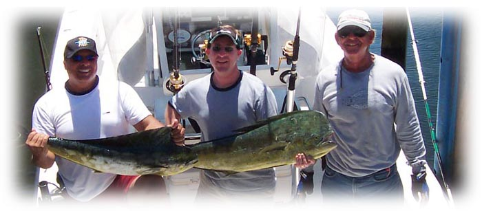 charter boat sailfish fishing, dolphin fishing, tarpon fishing, kingfish fishing in miami, miami beach