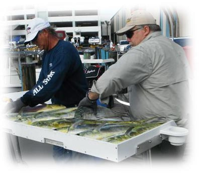 Light tackle charter fishing in miami and miami beach for for Miami fishing supply